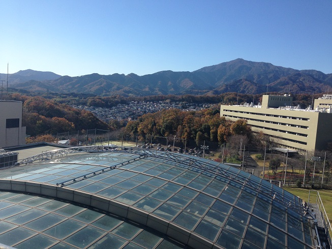 The Sky Above the Roof and Mount Oyama